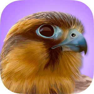 iBird Pro Birds North America For PC