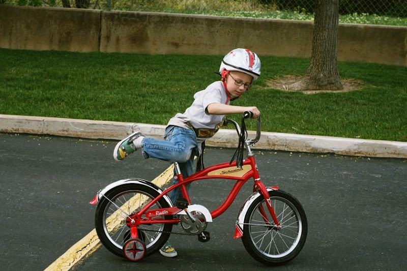 biketrailer7