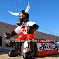 20 foot Rebel Bull.jpg