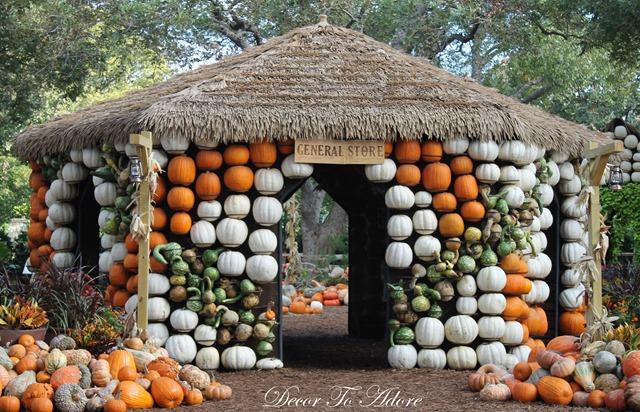 Pumpkins Arboretum 064