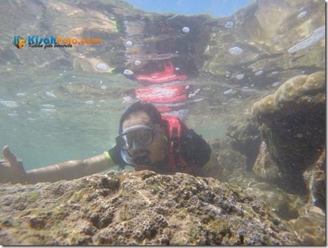 Snorkeling Pantai Nglambor Kisah Foto Blog06