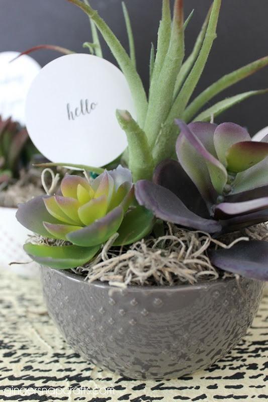 succulent gift ideas2