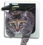 porta gato