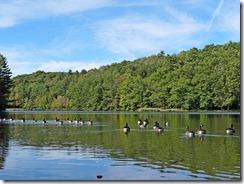 Little Beaver Lake and hike 045