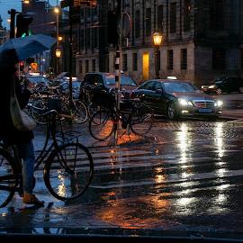 Rainy Amsterdam by Elena Lashneva - City,  Street & Park  Street Scenes