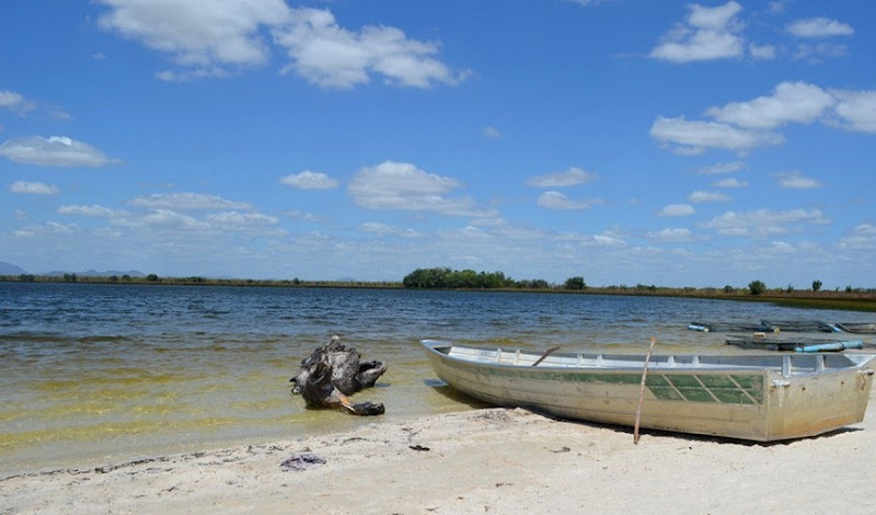 Lago Caracaranã - Normandia, Roraima, foto: Emily Costa/G1 RR