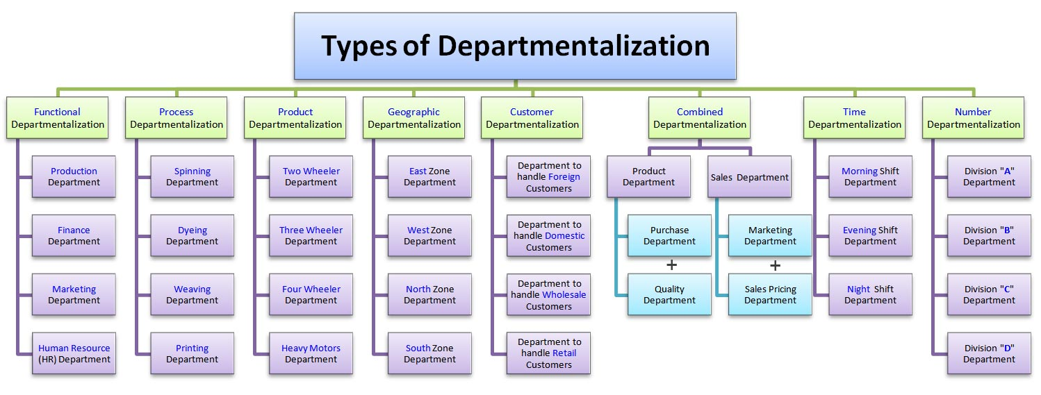 Functional and Product Departamentalization