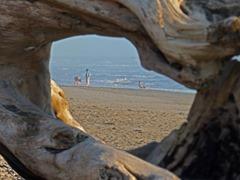South Beach, Olympic National Park