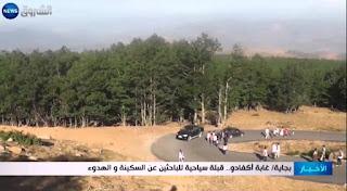 Forêt d'Akfadou Bejaia