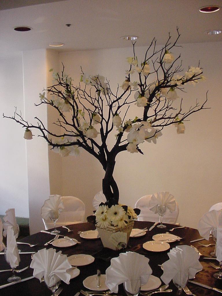 Crysties Blog Sarasota Destination Wedding