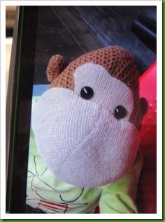 Monkey selfie..