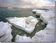 I ghiacci artici si stanno riducendo