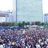 Ultra Japan 2015 in Tokyo, Tokyo, Japan