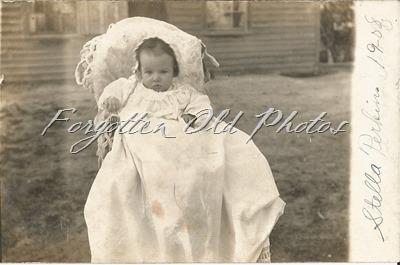 Stella Perkins 1908 DL ant