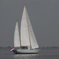Aan de wind op het Lauwersmeer.jpg