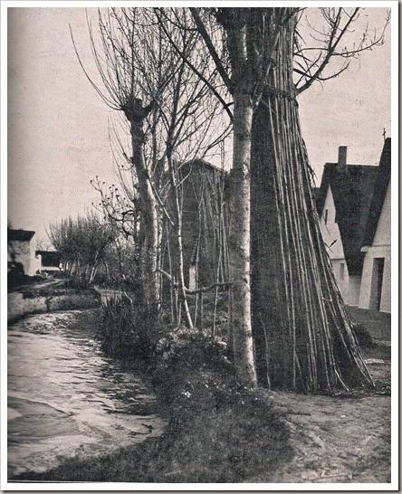 Acequia, huerta y barracas. 1911