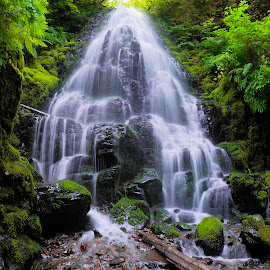 Fairy Falls by Steven McCarthy - Landscapes Waterscapes ( oregon, gorge, waterfall, falls, fairy )