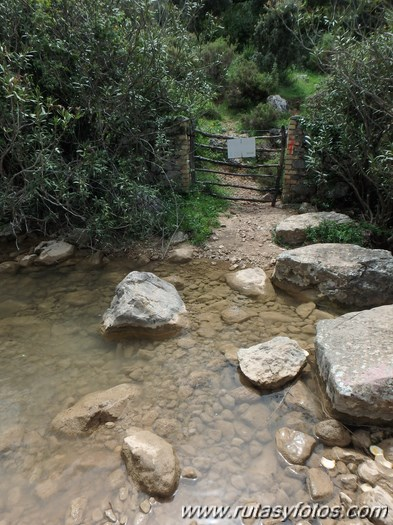 Barranco del Arroyo del Pajaruco