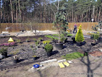 Nasadzenia roślinne