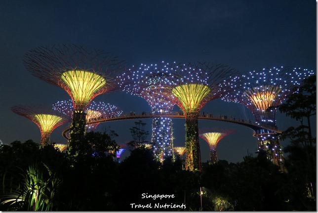 新加坡超級樹燈光秀 (20)