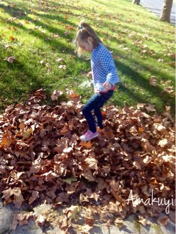 Happy-hojas-otoño-pisar-fotos
