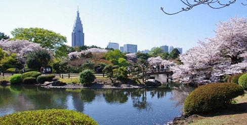 shinjuku-garden