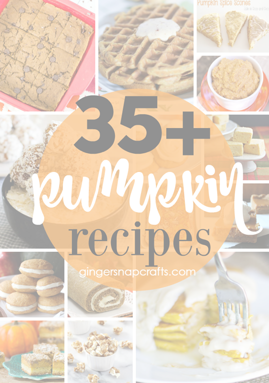 35  Pumpkin Recipes at GingerSnapCrafts.com