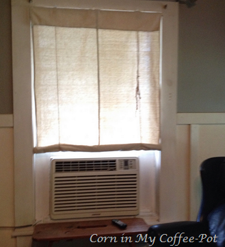 DIY  Drop Cloth Shade