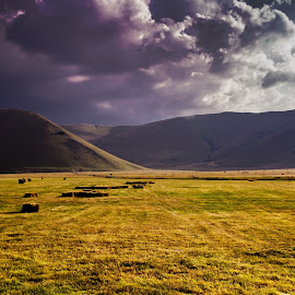 The Valley by Emanuele Zallocco - Landscapes Prairies, Meadows & Fields