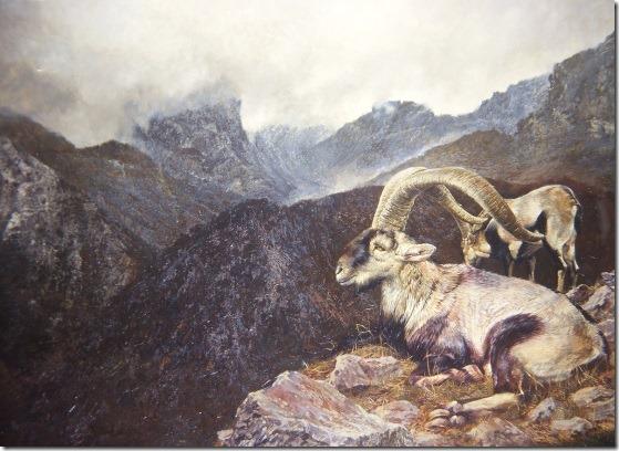 cabra montés - Oscar Correa -ENKAUSTIKOS