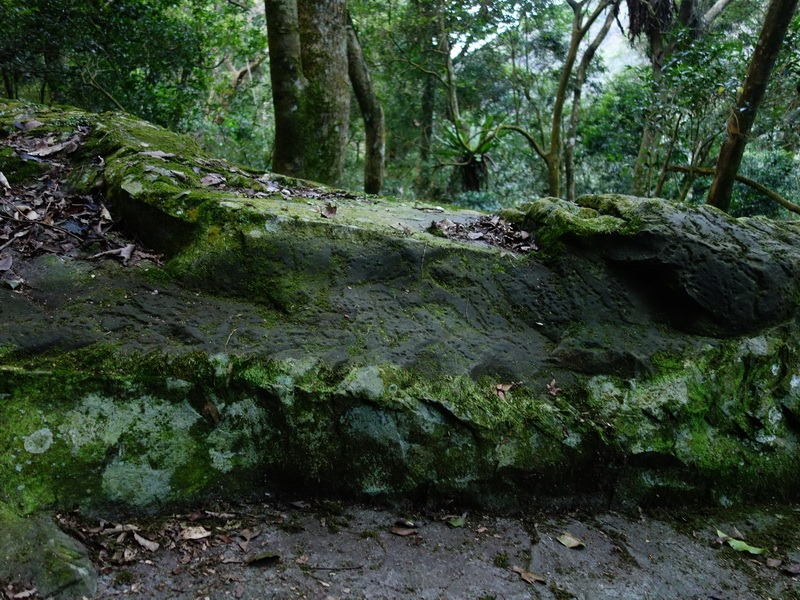 2014_0101-0105 萬山神石、萬山岩雕順訪萬頭蘭山_0475