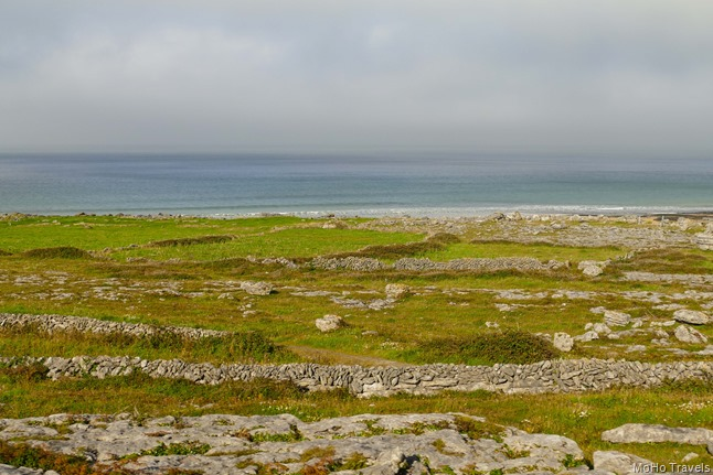 Burren and the Cliffs of Moher (1 of 1)-26