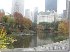 025 Central Park