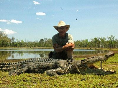 Crocodile Harvesting