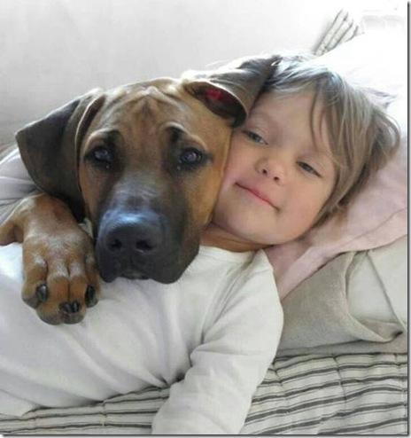 dog-love-friend-016