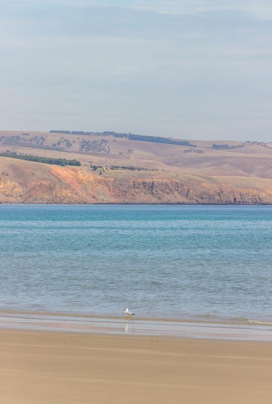 Wishful Thinking - Aldinga and Sellicks Beach