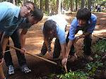 Alejandro, Óscar, Marta y Adam plantando