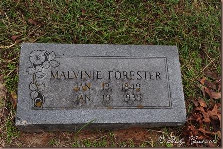 11-07-15 Whites Chapel Cemetery 11