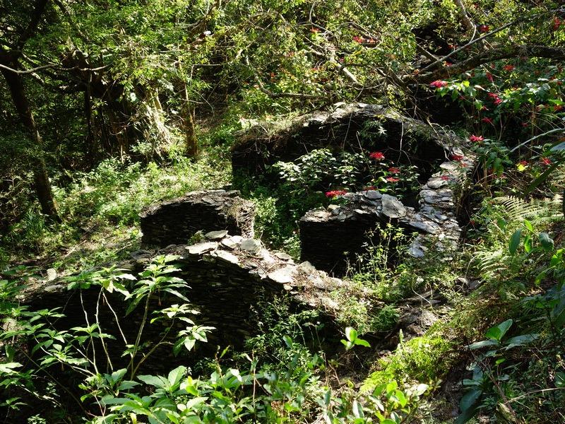 2014_0101-0105 萬山神石、萬山岩雕順訪萬頭蘭山_0124