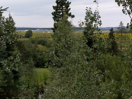 Alder Hills Golf Ltd, 6011 Giscome Rd, Prince George, BC V2N 6T4, Canada, Golf Club, state British Columbia
