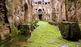 "The Coloseum ""Underground"" - Rome, Italy"