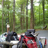 Legal Camping at Lackawaana State Park