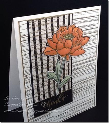 sb111 card 2