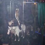 party at circa nightclub in toronto party at circa nightclub in toronto in Toronto, Ontario, Canada