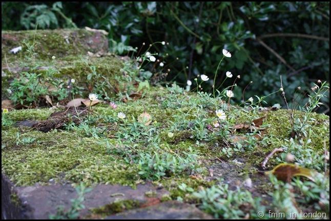 The Gardens Of Eltham Palace (15)