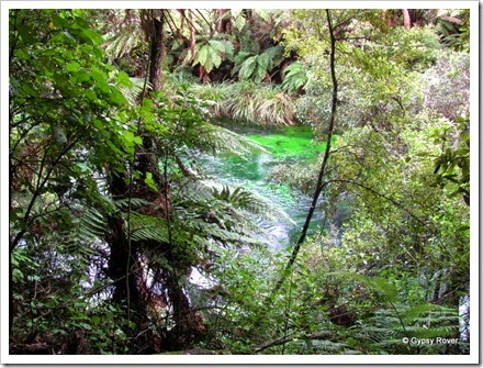 Beautiful colours in the Tarawera River