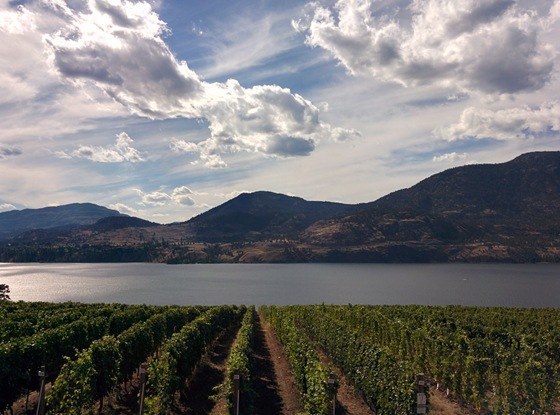 Skaha Lake beckons beyond the Painted Rock vineyard