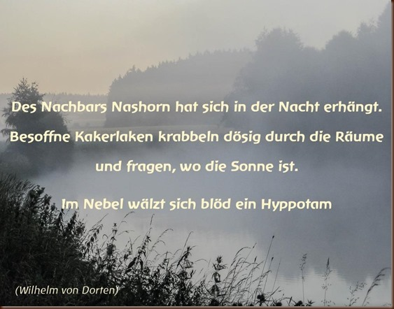 Des_Nachbars_Nashorn_a2