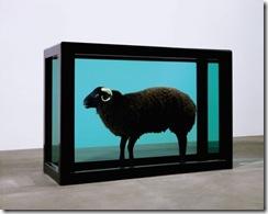 black_sheep_01