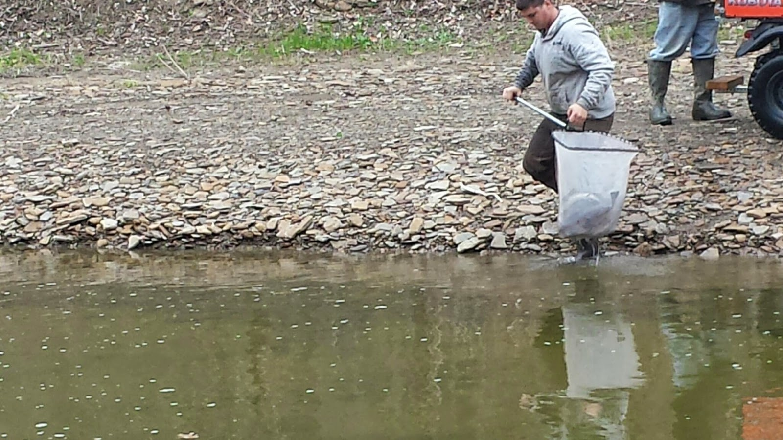 Paine creek stocked with 800 pounds of trout lake metroparks for Odnr fishing report